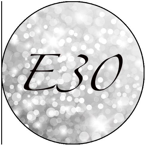 logg e30